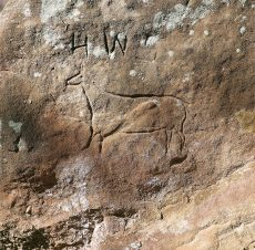Petroglyphs of the Kansas Smoky Hills